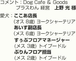 コメント:Dog Cafe & Goods プラスわん 経営 上野 光 様 愛犬:ここあ店長 (オス 8歳) ヨークシャーテリア 、 あいす副店長 (メス 6歳) ヨークシャーテリア  すぅぷフロアマネージャー (メス 3歳)トイプードル、 ぷりんフロア担当 (メス 2歳)トイプードル