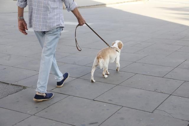 歩く速さと一緒に意識すべきこととは
